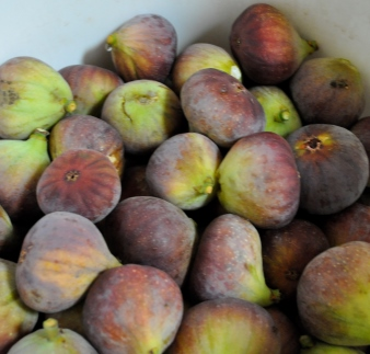 Recipe: Sweet Spiced Fig and Fortified Compote
